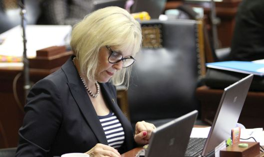 Representative Stacey Newman (D) on the floor of the House [May 2013 file photo]