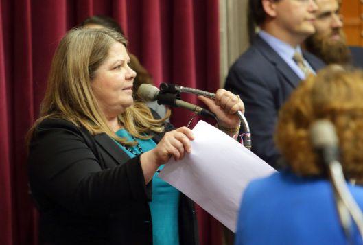 Representative Gina Mitten (D) - May 12, 2016.